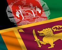 Ambassador Haidari Condemns Terror Attacks in Sri Lanka and Condoles with the Sri Lankan Government and People